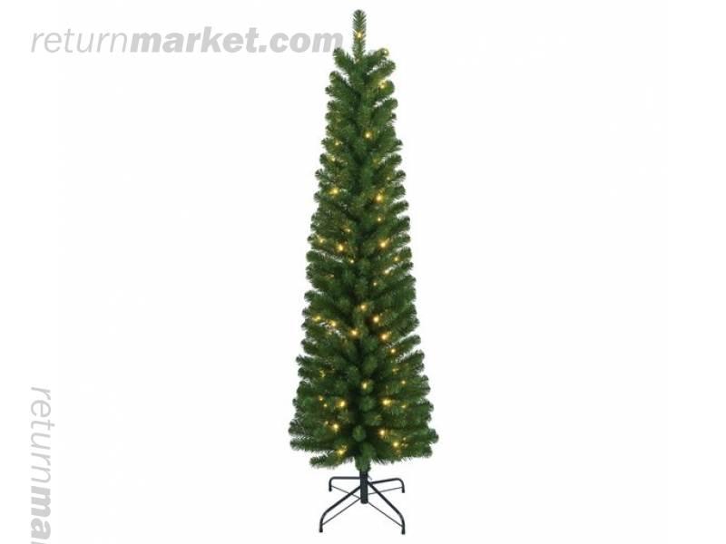 Christmas Trees! Sa21048